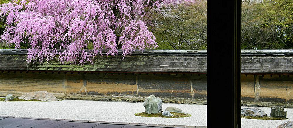 大雲山 龍安寺|Ryoanji